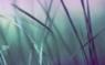 年下童貞の男の子に手を出して騎乗位で童貞チンポをむきむきしちゃう四十路バツイチOLの体験談【イメージ画像1】